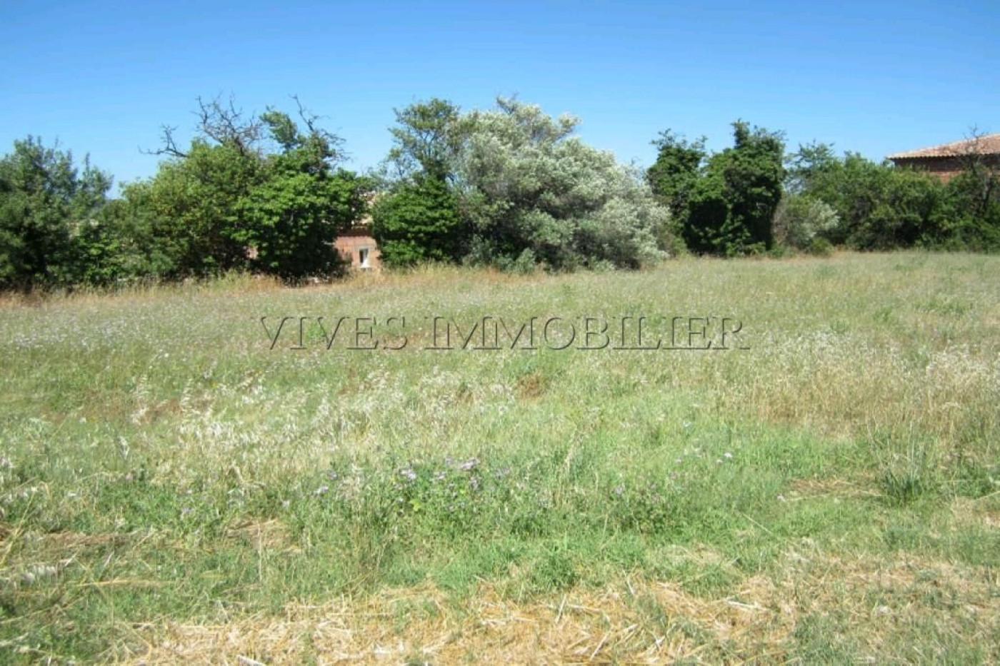A vendre Montels 34539368 Vives immobilier