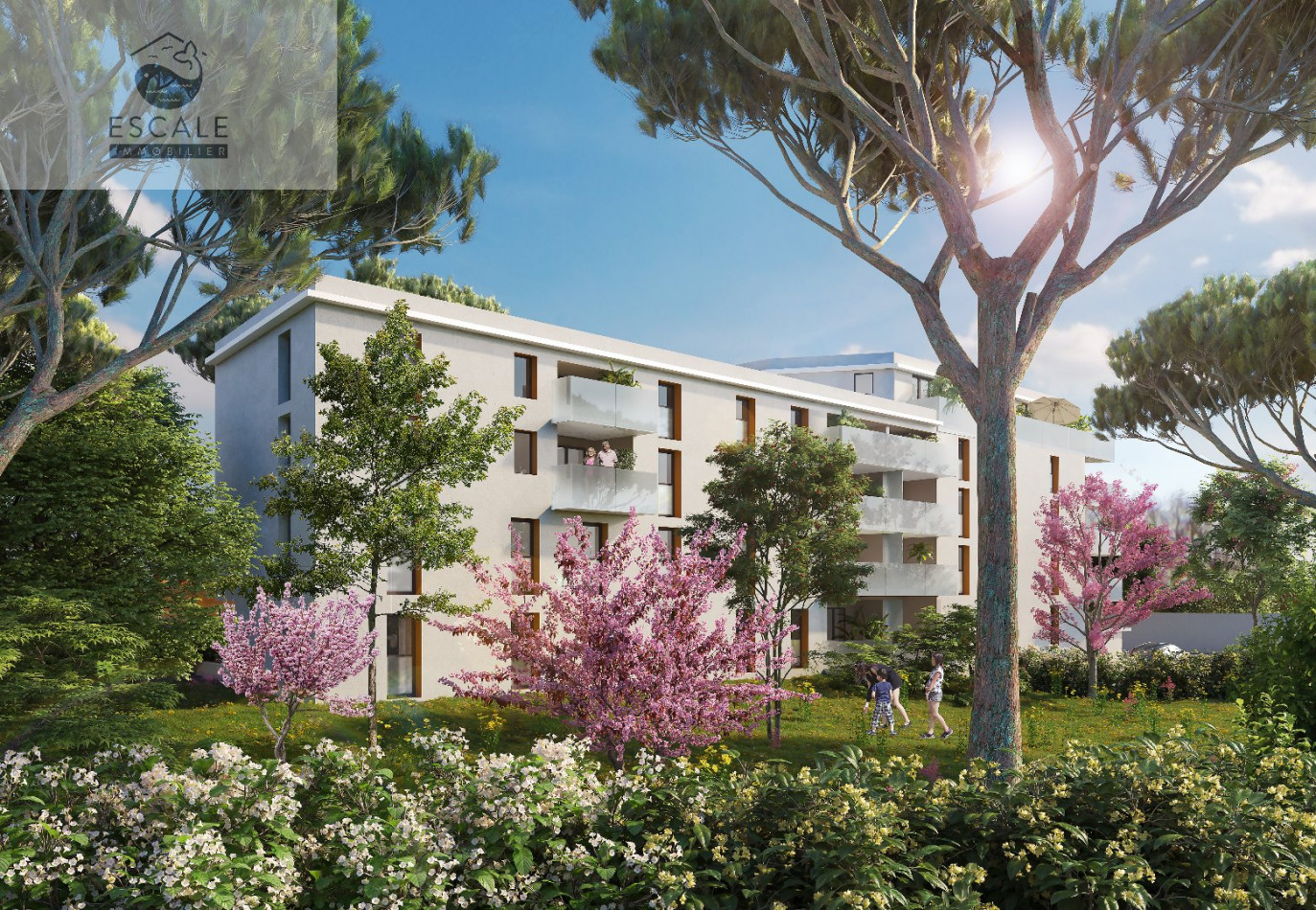 A vendre Sete 345464648 Escale immobilier