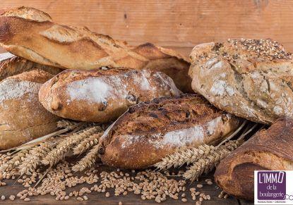 A vendre Gard 3454848 L'immo de la boulangerie