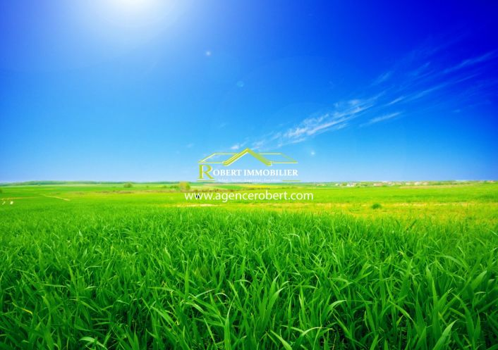 A vendre Pinet 345514425 Robert immobilier
