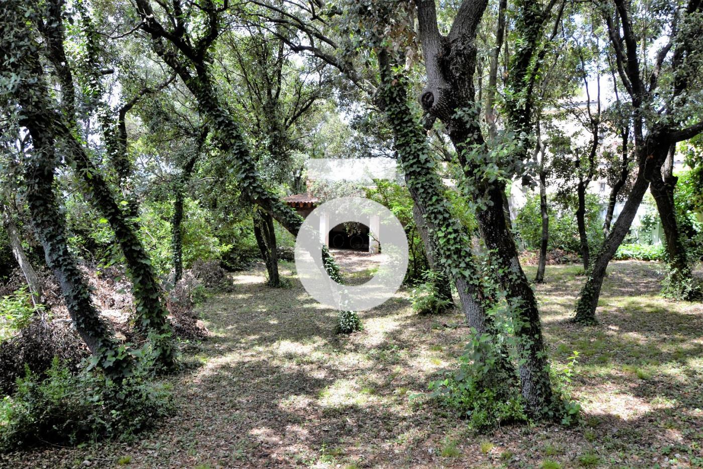 A vendre Saint Gely Du Fesc 345562934 Opus conseils immobilier