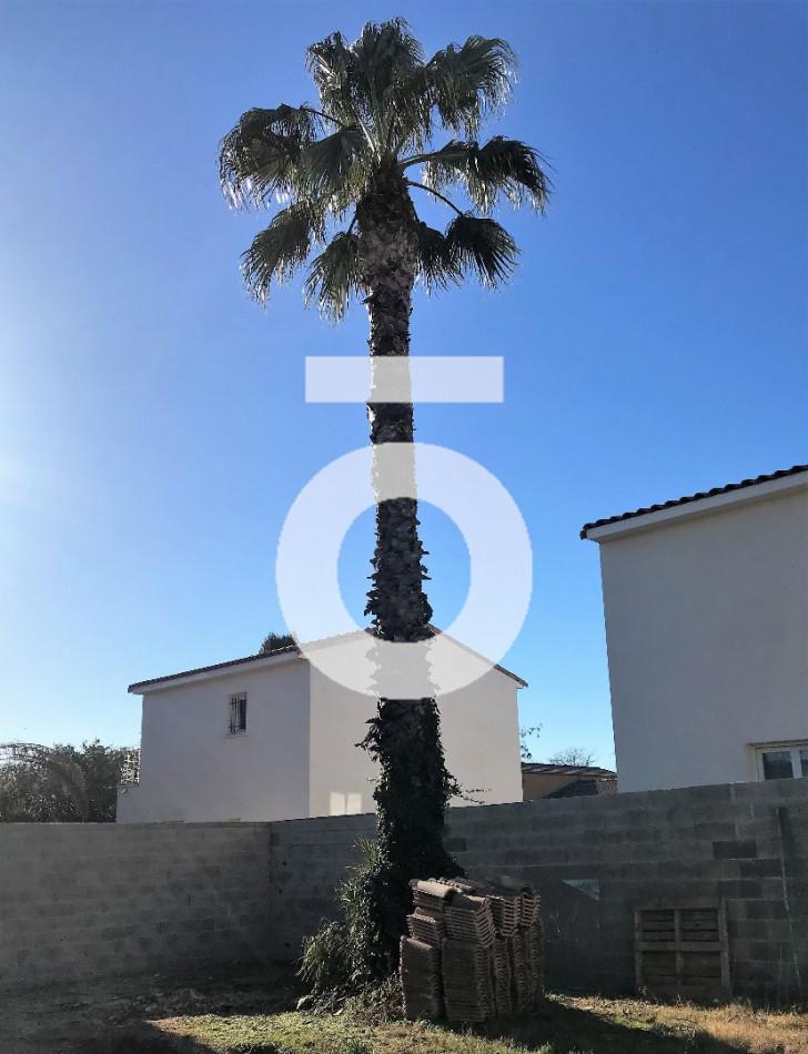 A vendre Le Cres 345566234 Opus conseils immobilier