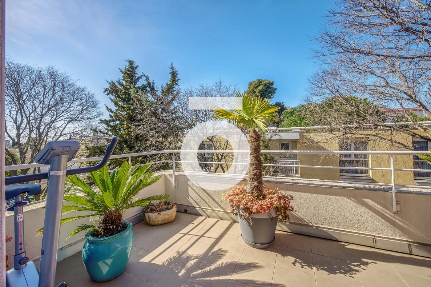 A vendre  Montpellier   Réf 345566429 - Opus conseils immobilier