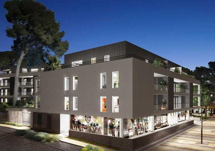 A vendre Castelnau Le Lez 3455916 Atrihome immobilier