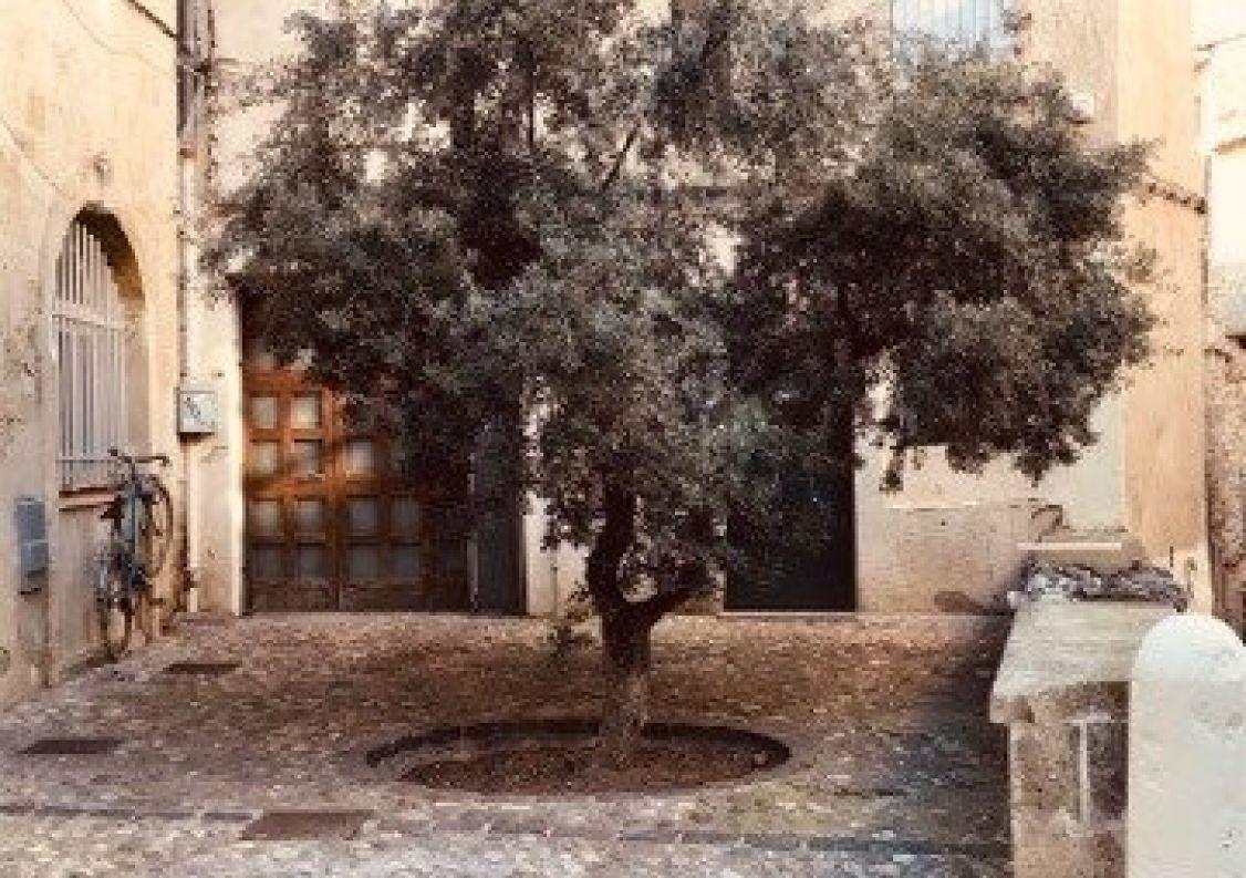 A vendre Montpellier 3452749059 Comptoir immobilier de france