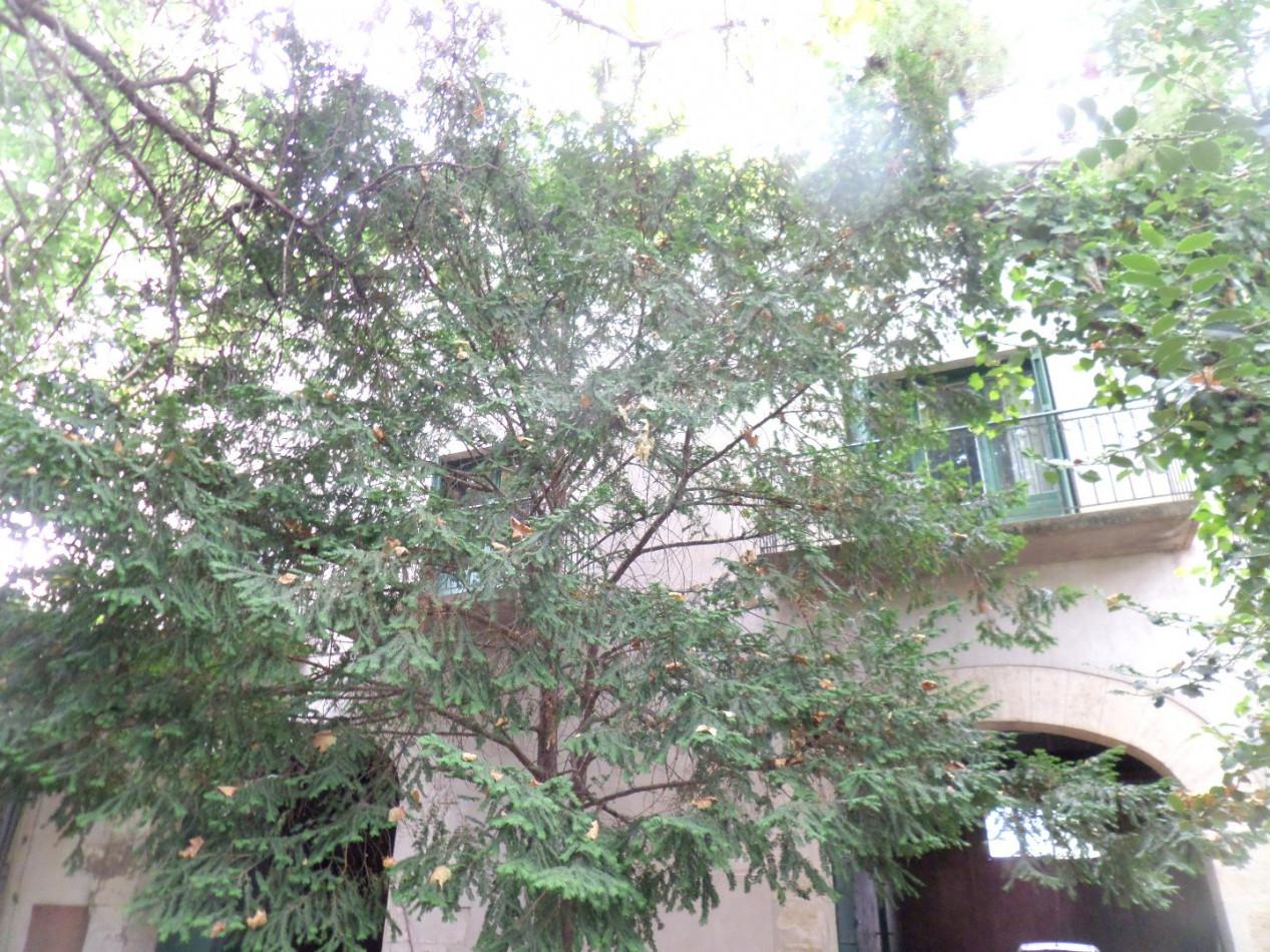 A vendre Montpellier 3456230556 Comptoir immobilier de france
