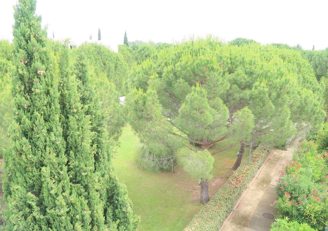 A vendre Montpellier 3456240689 Comptoir immobilier de france