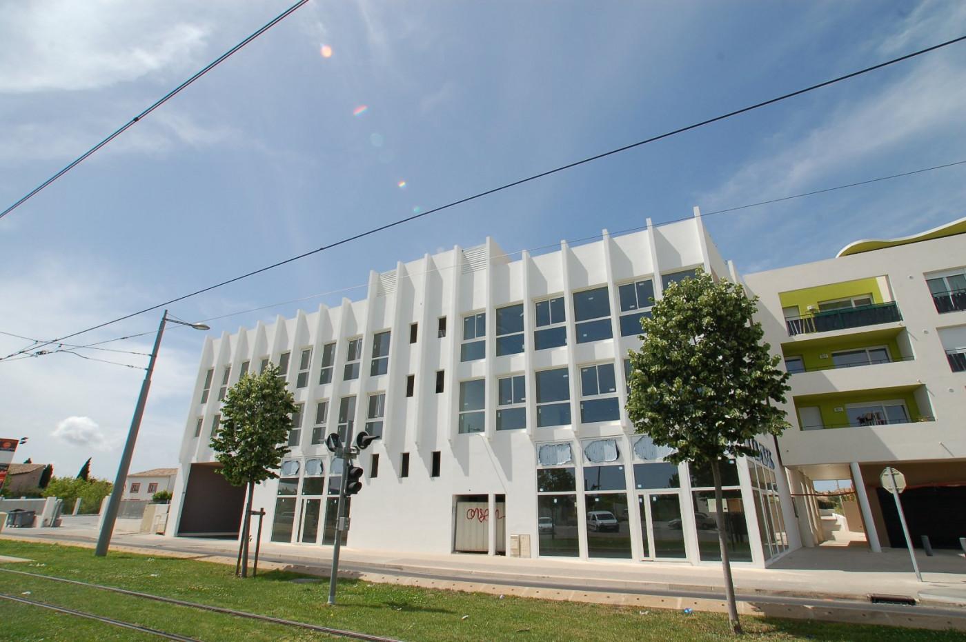 A vendre  Castelnau Le Lez   Réf 34578875 - Immobiliere dejean patrimoine