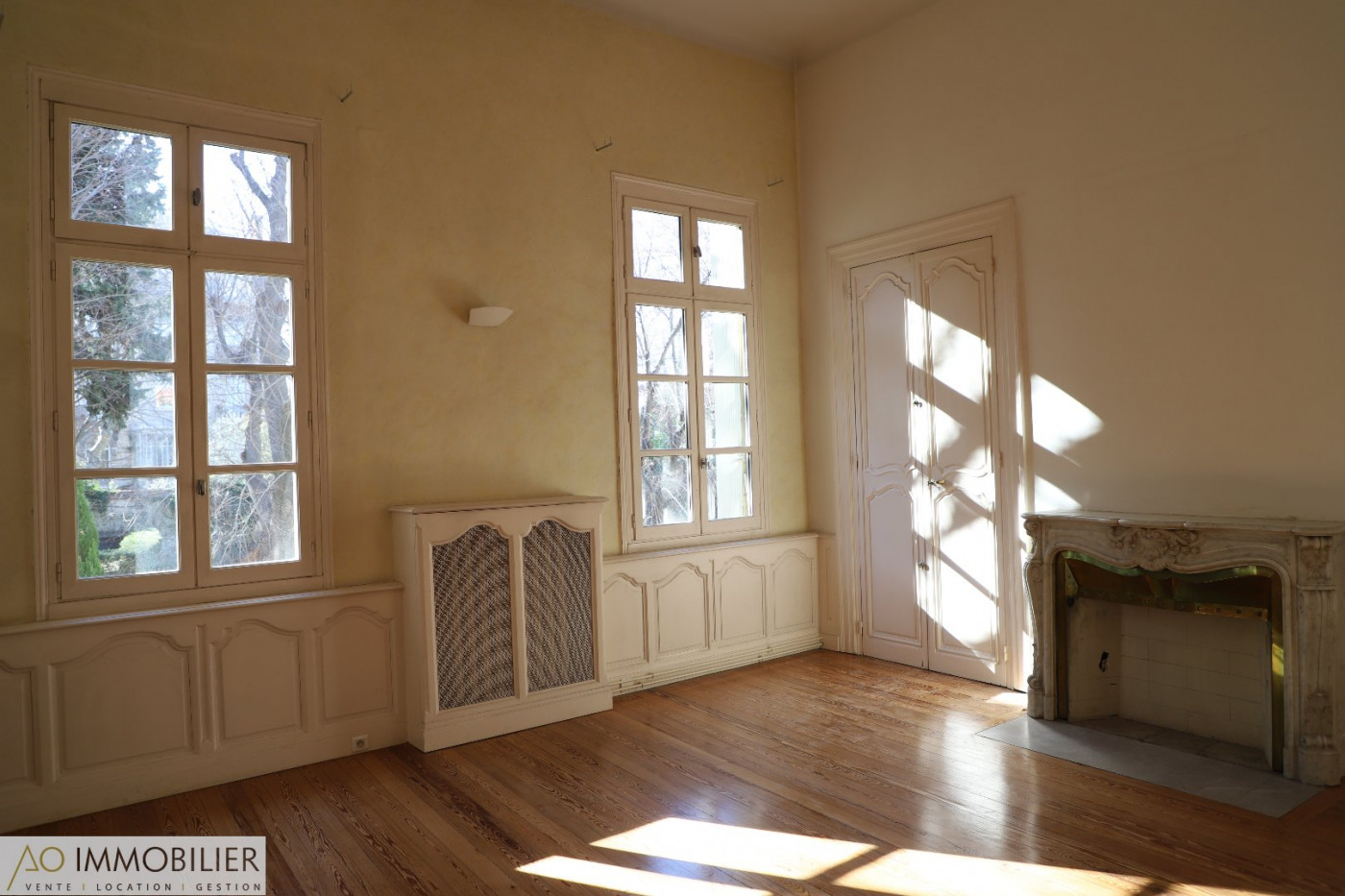 A louer Montpellier 34579164 Ao immobilier