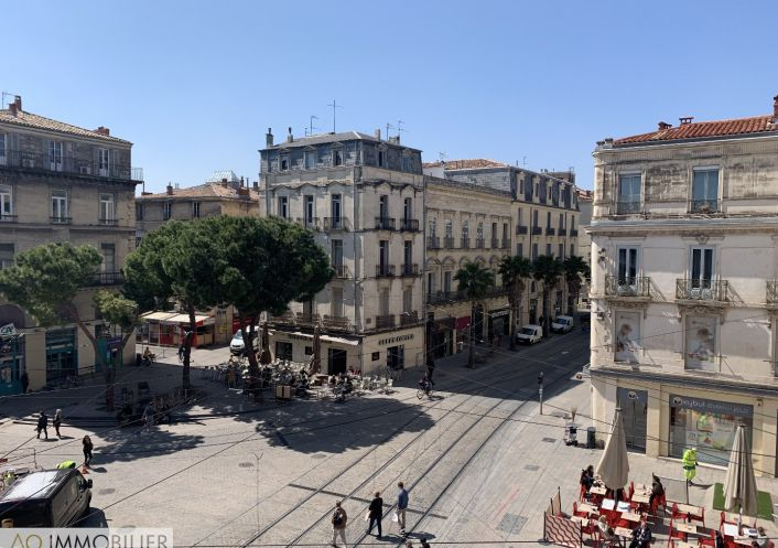 A louer Montpellier 34579377 Ao immobilier