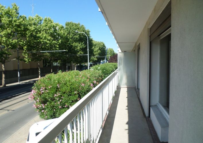 For rent Montpellier 3458551 Cabinet pecoul immobilier