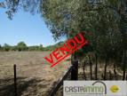 A vendre Castries 3458631663 Castrimmo