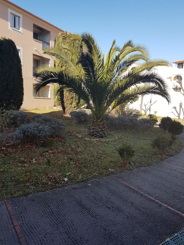 A vendre Montpellier 346495 Mblh immo