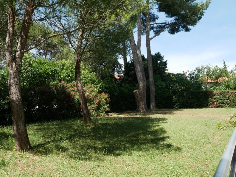 A vendre Montpellier 3467917232 Saunier immobilier montpellier