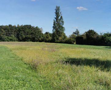A vendre  Bengy Sur Craon | Réf 360021033 - Mon terrain ideal