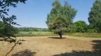 A vendre Montigny 36002196 Mon terrain ideal