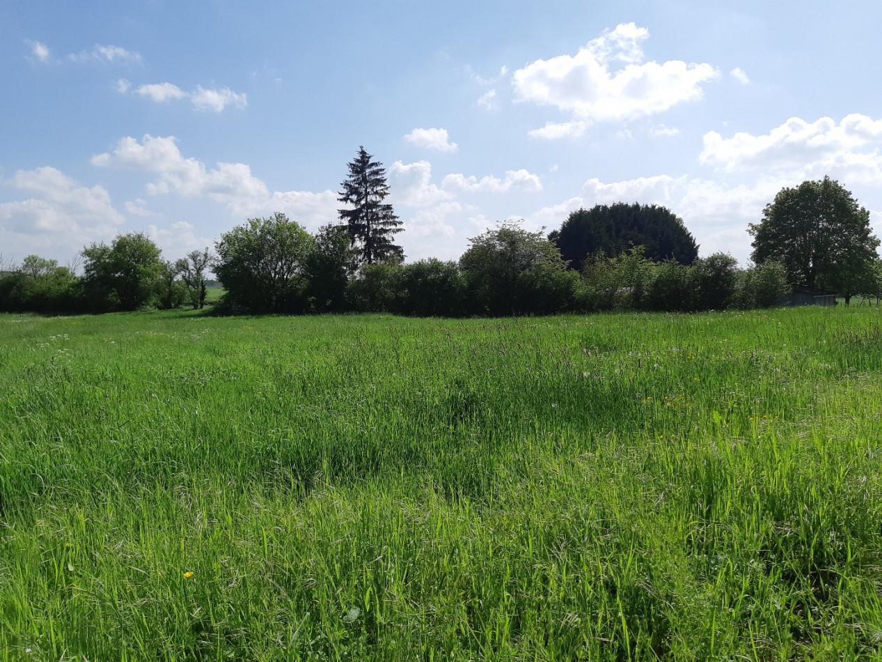 A vendre Saint Eloy De Gy 36002372 Mon terrain ideal