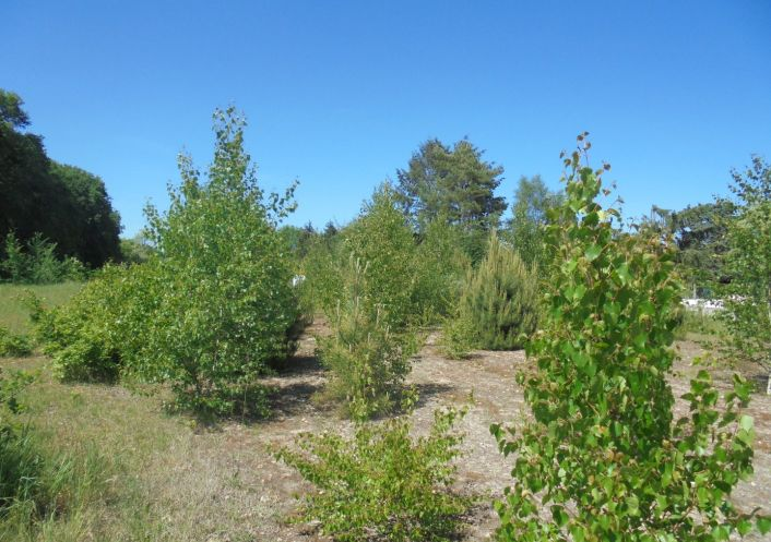 A vendre Vignoux Sur Barangeon 36002391 Mon terrain ideal