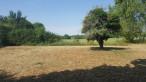 A vendre Rians 36002422 Mon terrain ideal