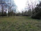 A vendre Allogny 36002493 Mon terrain ideal