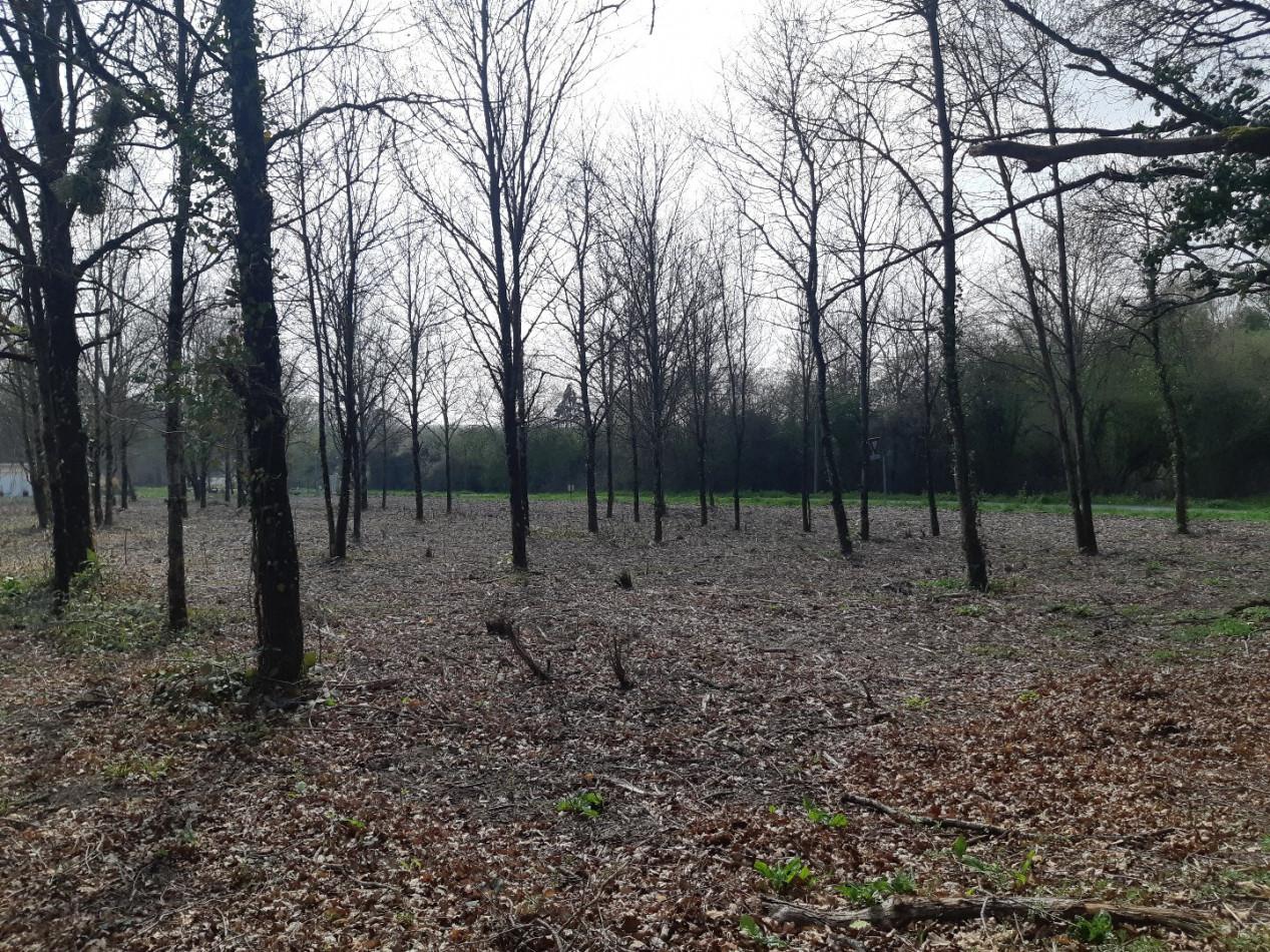 A vendre  Vignoux Sur Barangeon   Réf 36002501 - Mon terrain ideal