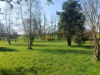 A vendre  Massay   Réf 36002658 - Mon terrain ideal