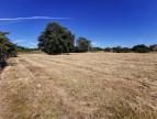 A vendre  Drevant | Réf 36002754 - Mon terrain ideal