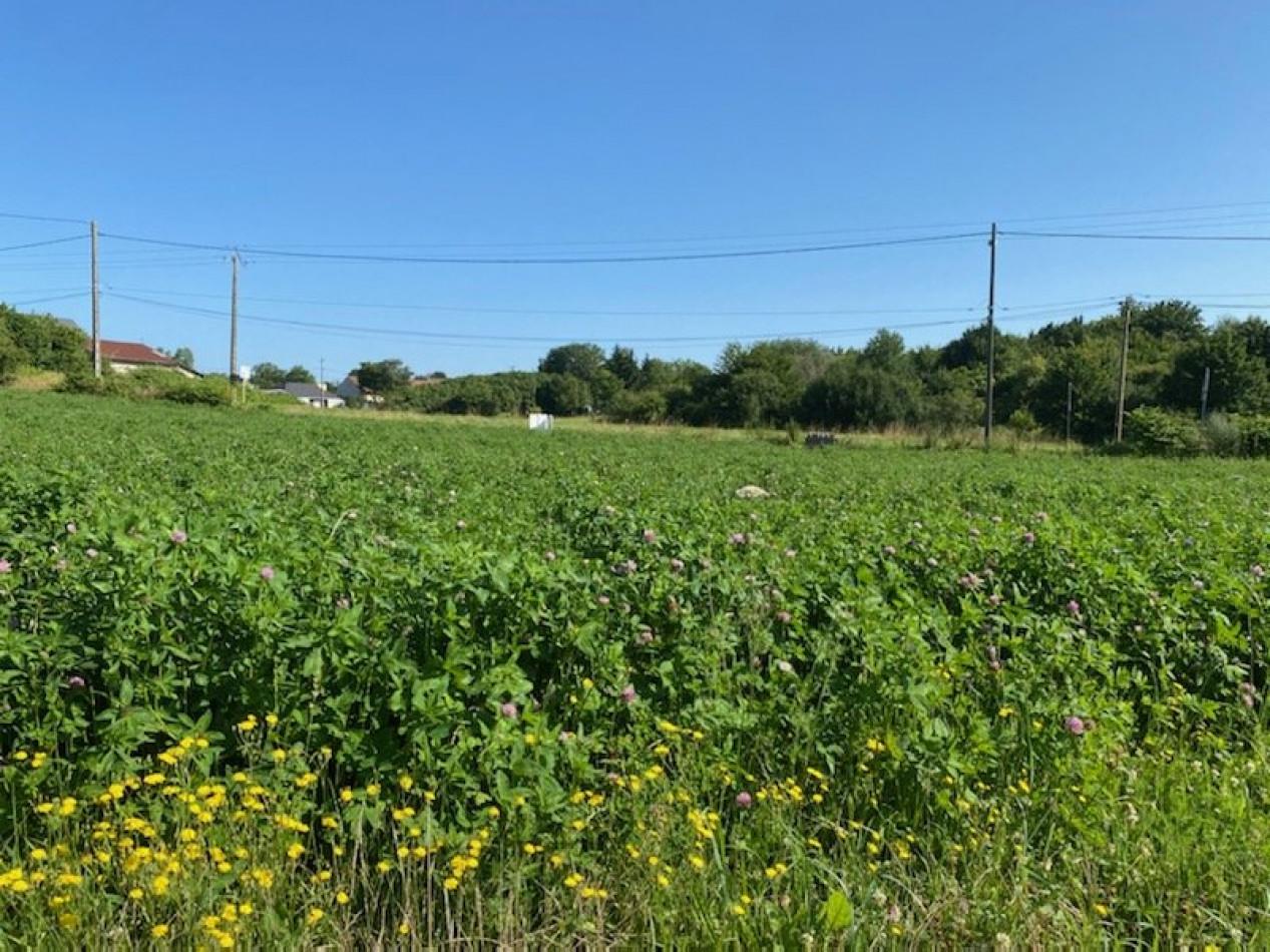 A vendre  Saint Martin D'auxigny | Réf 36002997 - Mon terrain ideal