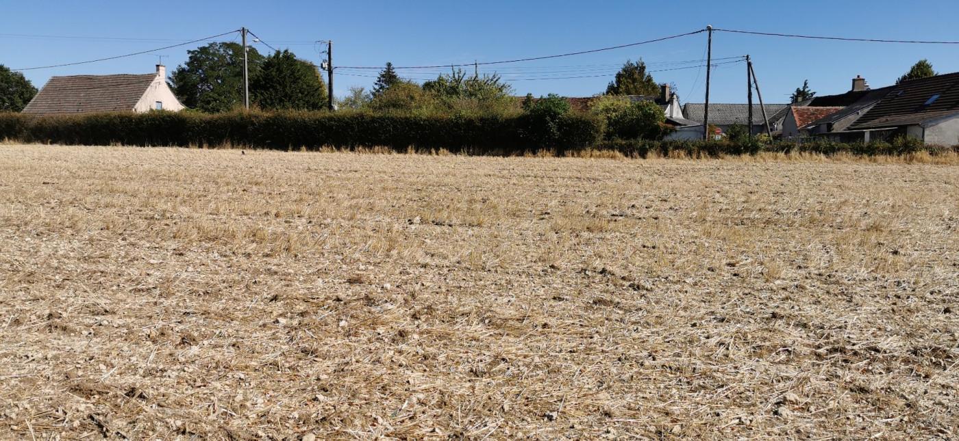 A vendre  Baugy | Réf 36003594 - Mon terrain ideal