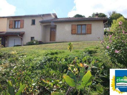 A vendre Cour Et Buis 380131086 Cimm immobilier