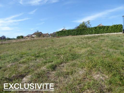 A vendre Morestel 38015613 Faure immobilier