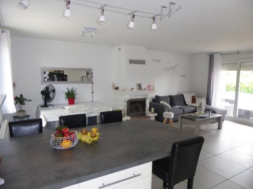 A vendre Trept 38015635 Faure immobilier