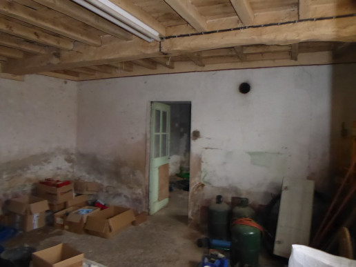 A vendre Trept 38015838 Faure immobilier