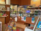 A vendre Grenoble 380381478 Immo sud plus