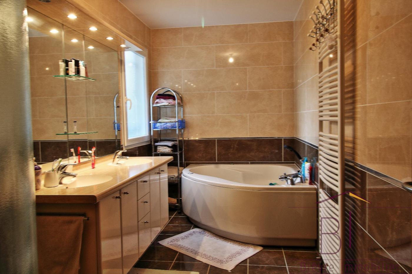 A vendre Vienne 380422211 Bievre immobilier