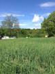 A vendre Saint Barthelemy De Beaurepai 3804267 Bievre immobilier