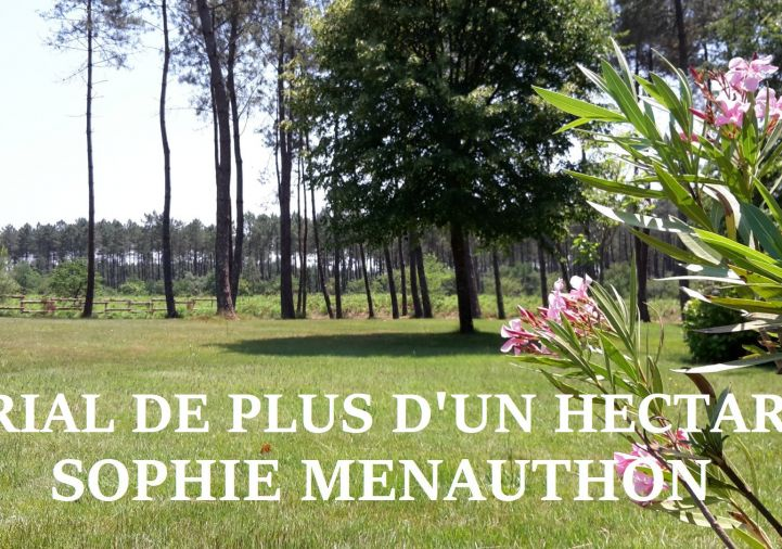 A vendre Dax 4000910329 Equinoxes immobilier