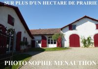 A vendre Peyrehorade  400096135 Equinoxes immobilier