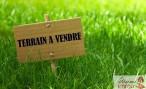A vendre Roquefort 40011600 Madame immo