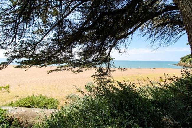 A vendre Saint Marc Sur Mer 41002716 Youimmo