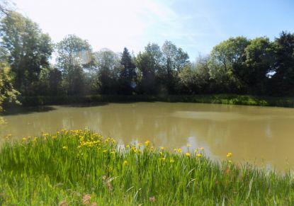 A vendre Bain De Bretagne 4400714875 Reseau blain habitat