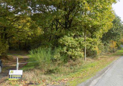 A vendre Erce En Lamee 440079128 Reseau blain habitat
