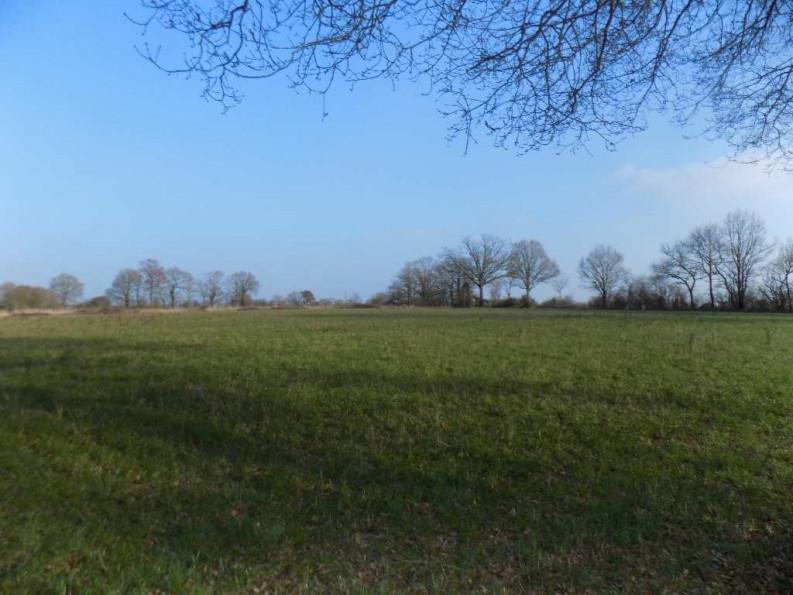 A vendre Saint Sulpice Des Landes 440079472 Blain habitat