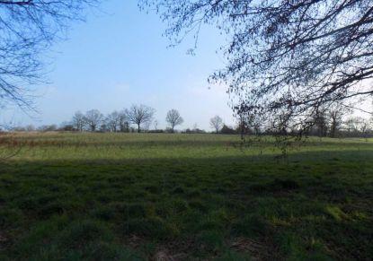 A vendre Saint Sulpice Des Landes 440079473 Blain habitat