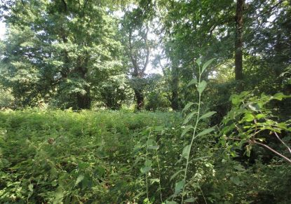 A vendre Plesse 4400811011 Blain habitat