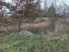 A vendre Savenay 4400814269 Groupe blain habitat