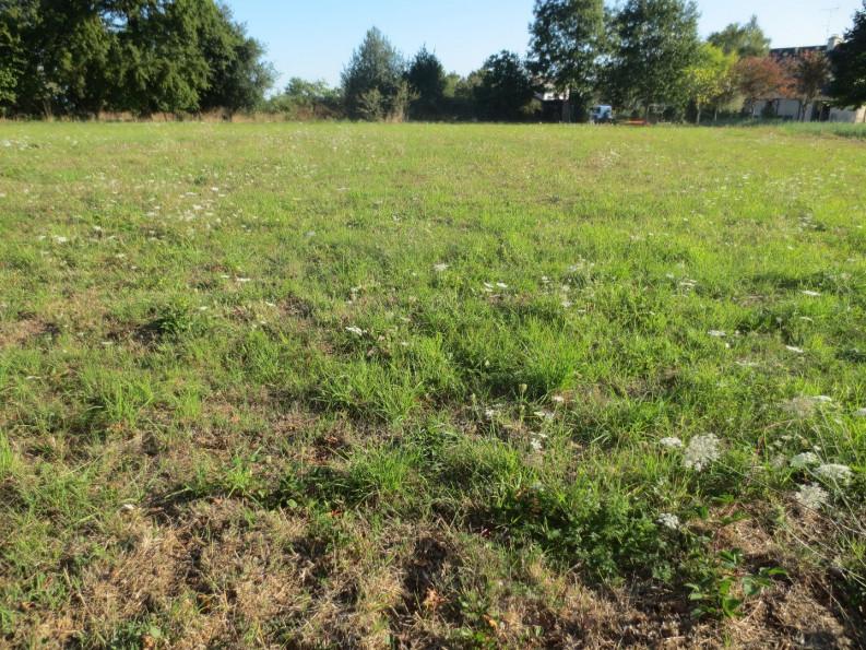 A vendre Avessac 4400815098 Reseau blain habitat