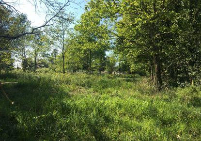 A vendre Plesse 4400815805 Reseau blain habitat