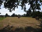 A vendre Plesse 440088271 Reseau blain habitat