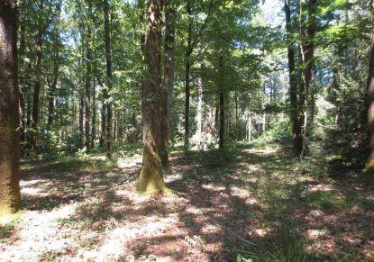 A vendre Plesse 440088340 Blain habitat